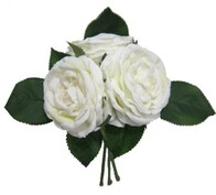Cabbage Rose Bouquet - Cream