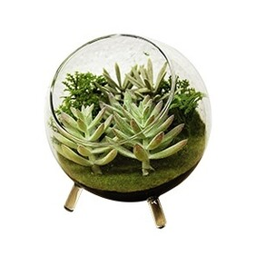 Artificial Terrarium